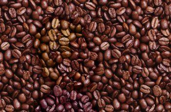 Kahve Kokusu İçeren Parfümler